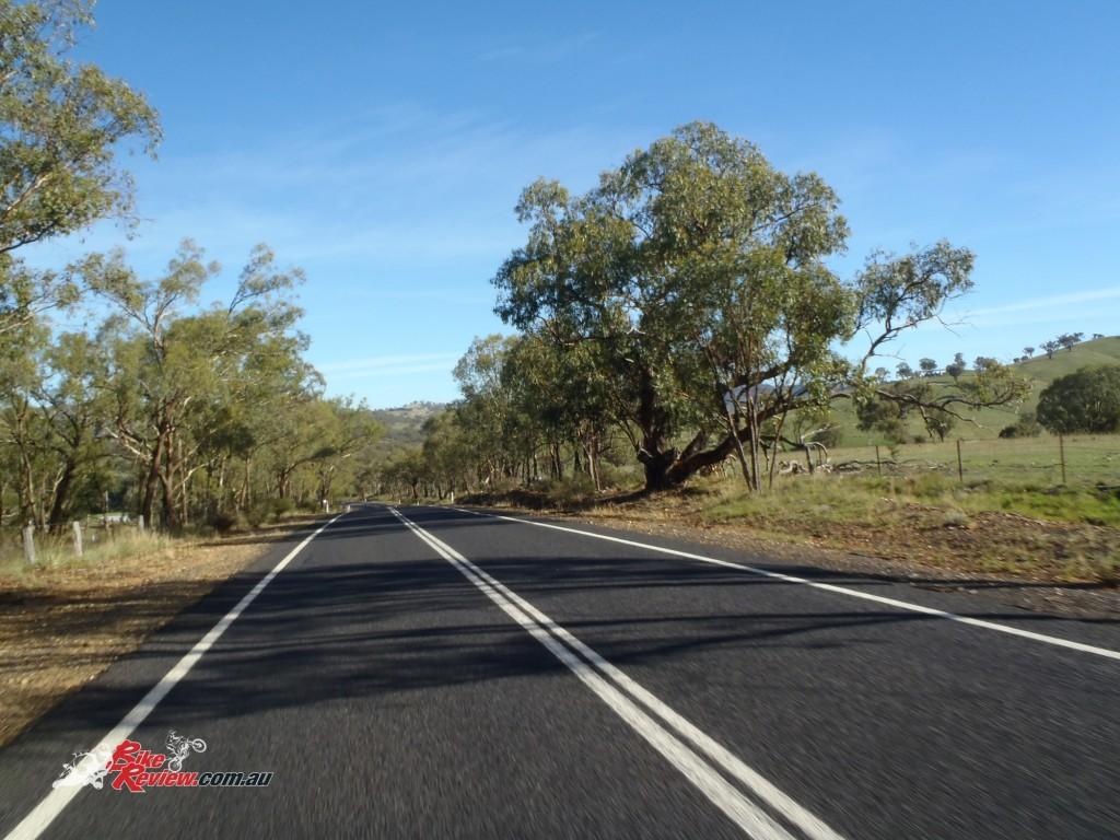 Aussie-Hardarse-Murray-Nettheim-(14)
