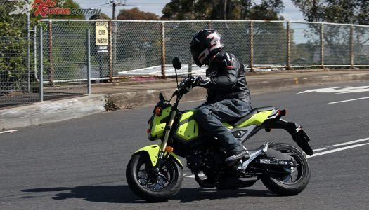 2016 Honda Grom Review
