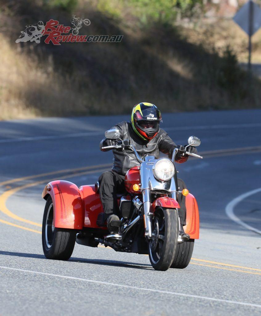Harley-Davidson-Pugs-on-Freewheeler