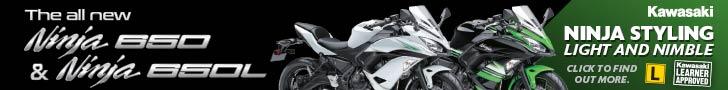 Kawasaki 650L