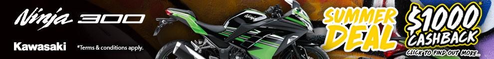 Kawasaki Summer 300