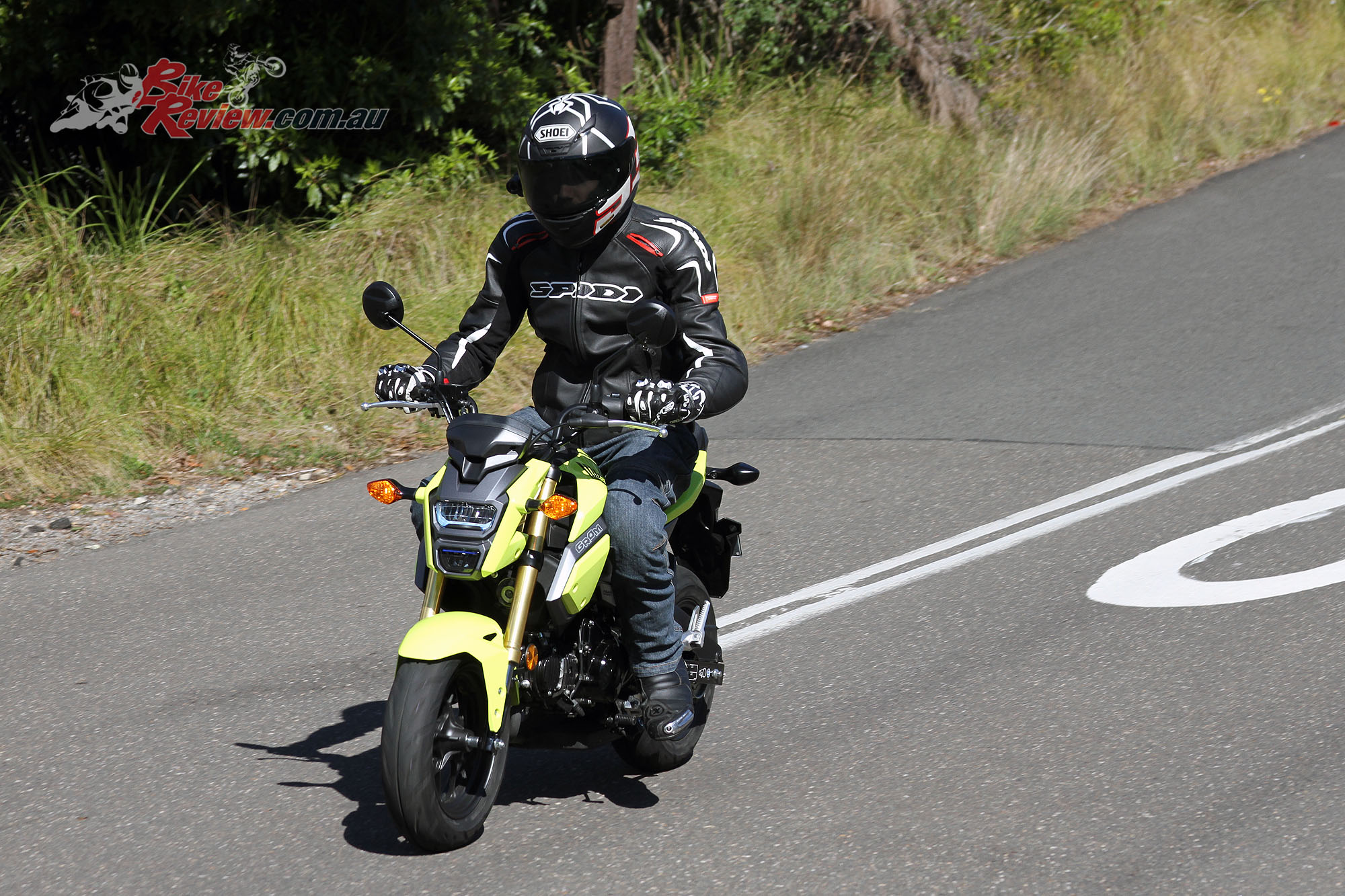 Harley Street 500 >> Review: 2016 Honda Grom - Bike Review