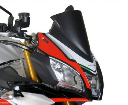 Powerbronze Aprilia Tuono V4 1100 - Screens