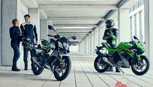 New Model: 2019 Kawasaki Z125 & Ninja 125
