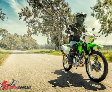 2019 Kawasaki KLX230 action