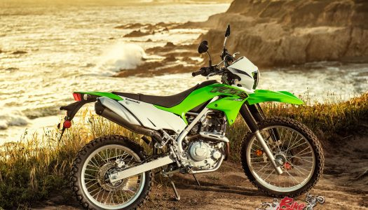 New Model: 2019 Kawasaki KLX230