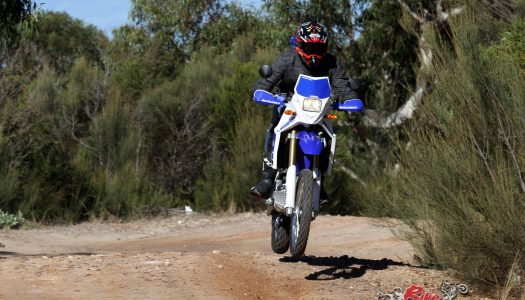 Long Term: 2019 Yamaha WR250R – Tenere Replica