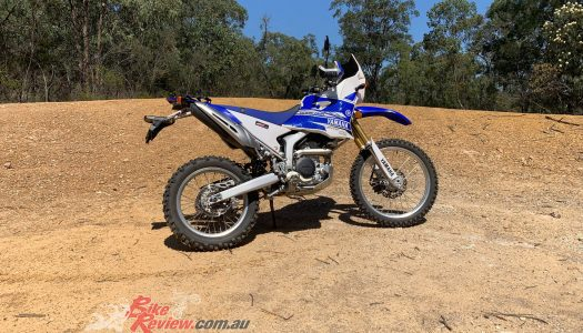 Staff Bikes: Long Term Update, WR250R Tenere Replica
