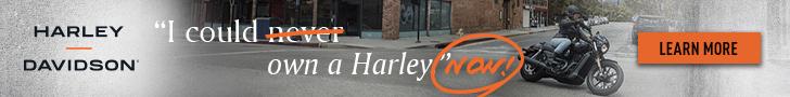 Harley Q2