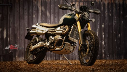 Model Update: 2021 Triumph Scrambler 1200 XC, XE and Steve McQueen Editions